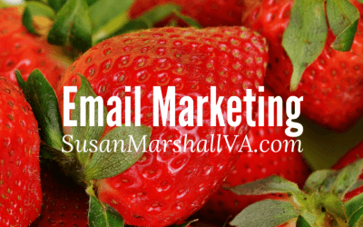 Send Email. Connect With Customers. Grow Your Business.