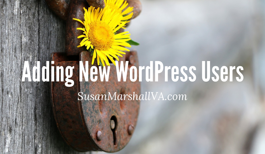 Adding New WordPress Users And Setting Access Roles